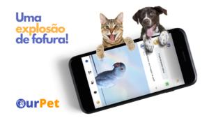 OurPet – O App Animal